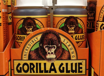 Dog-ate-gorilla-glue