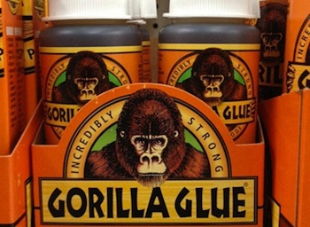 Gorilla-Glue-Dog