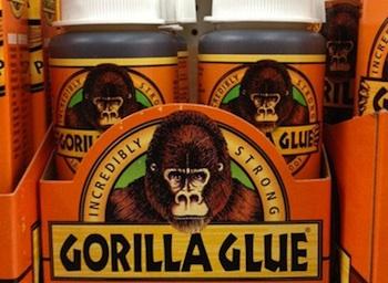 Gorilla-Glue-Dog