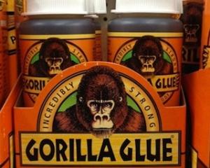 Gorilla-Glue-Dog-Hot-Topic.jpg