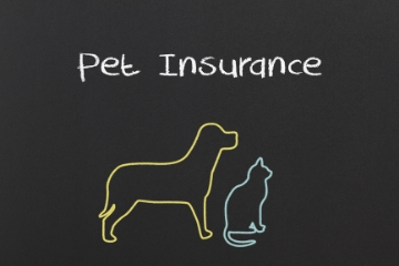 is-pet-insurance-worth-it