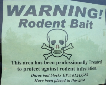 rodenticides-dangerous-for-dogs-and-cats