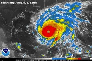 Make_a_Plan_to_Protect_your_Pets_During_Natural_Disasters_Emergency_Preparedness_for_Cats_and_Dogs-Image-1
