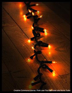 the 12 days of christmas pet hazards series day 7 lights electrical cords