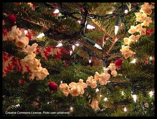 The-12-Pet-Hazards-of-Christmas-Day-6-Ornaments-image-3
