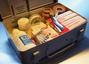 creating-a-pet-first-aid-kit.jpg