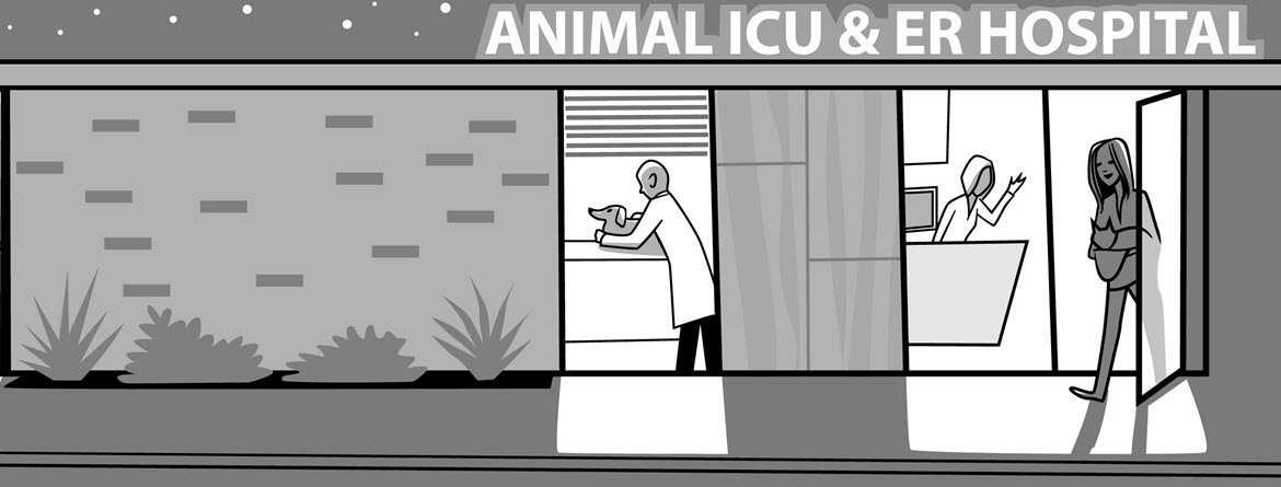 Find A Veterinary Specialist