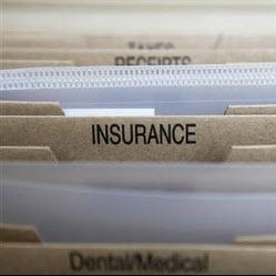 pet-insurance-is-it-worth-it