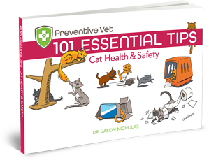 Cat health and safety tips book written by vet