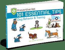 101 Essential Dog Behavior Training Tips