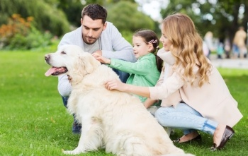 Adults With Child Dog Introduction