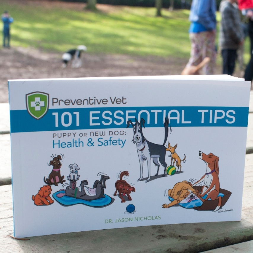 101 Essential Tips for Dogs