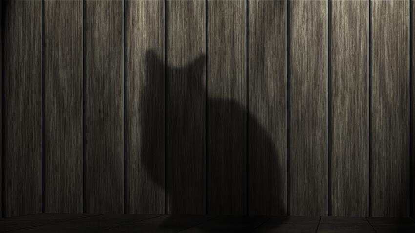 Cat Shadow Fence