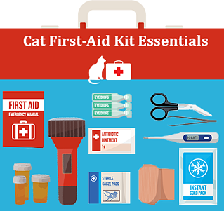 Cat First Aid Essentials Graphic Png