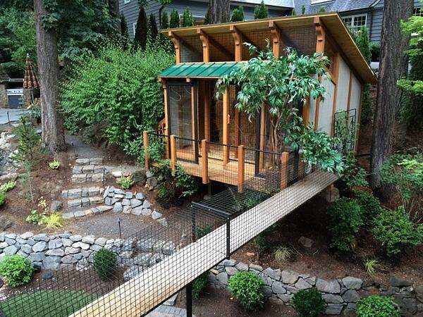 awesome catio design