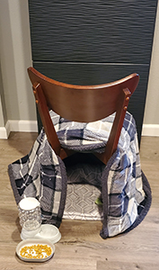 Chair hiding spot 300h