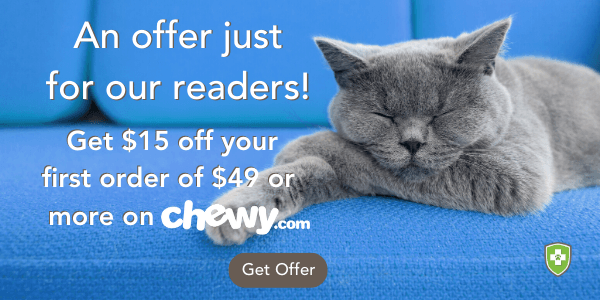 chewy special offer