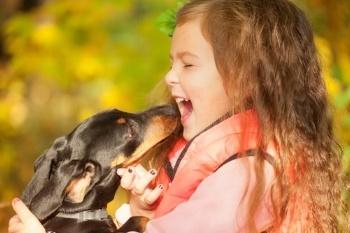 Child-dog-introduction.jpg