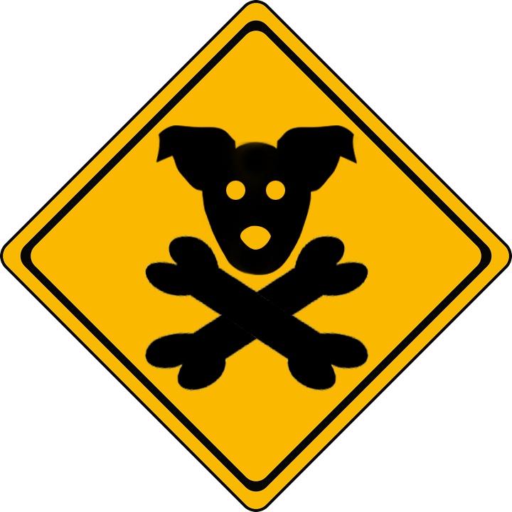 Dog Sign Toxins