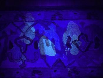 Dog pee glows under blacklight