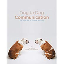 Dog to Dog Communication- The Right Way to Socialize Your Dog