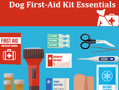 First-Aid-Essentials-Dog-Hot-Topic.png