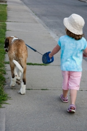 Girl-Walking-Dog-Retractable-Leash-Dangers.jpg