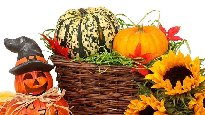 Halloween Decorations Basket and String.jpg