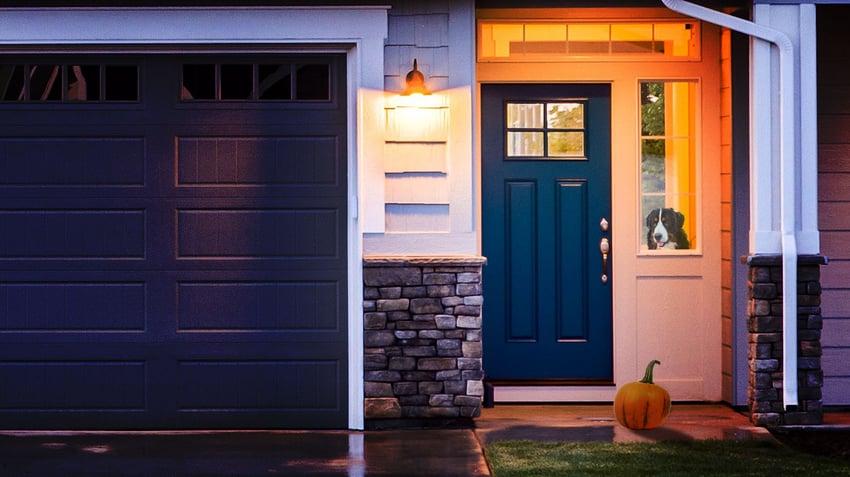 House Door Pumpkin Dog.jpg