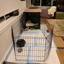 finnegans-puppy-playpen-setup