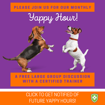 Join us for Yappy Hour (1)