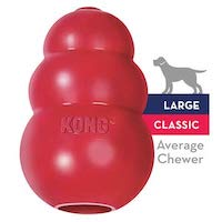 Kong Average Chewer