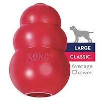Kong Average Chewer