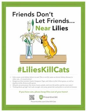 Lilies Kill Cats-1