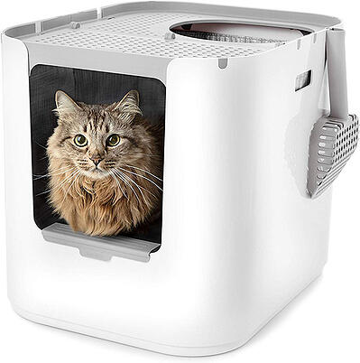 Modkat extra large litter box with top and front entry