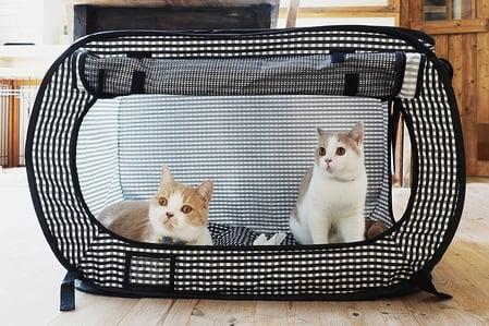 Necoichi Cat Cage