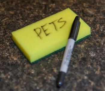PETS Sponge.jpg