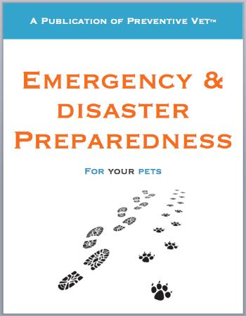 PV-EmergPrep-eBook.png