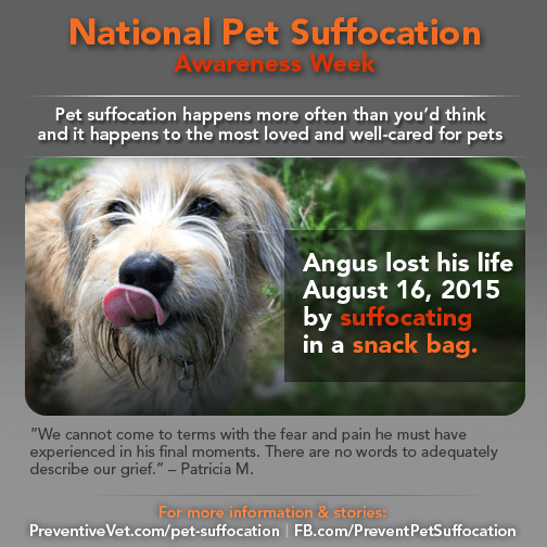 pet suffocation awareness