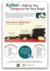 download our xylitol awareness poster