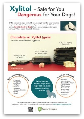 PV-Xylitol-Poster