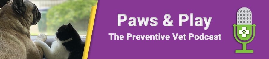 Paws and Play Podcast Header Banner