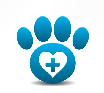 pet-first-aid-awareness