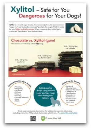 Xylitol-Poster