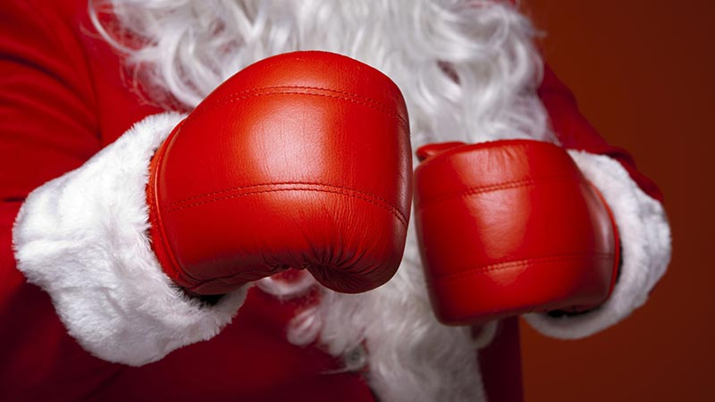 Santa Boxing Gloves