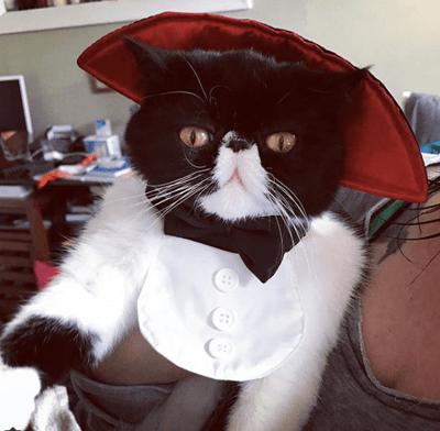 Count Mazula