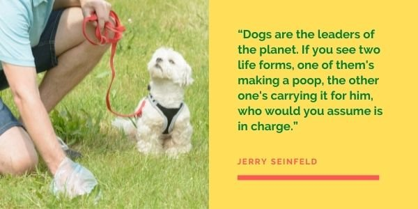 Seinfeld dog quote being the leader of the planet