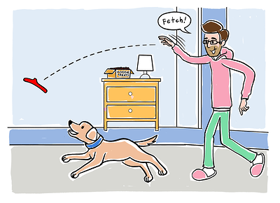 Teaching fetch step 6