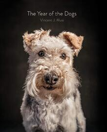 The year of dogs book