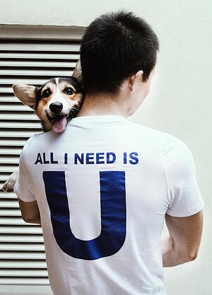 all-you-need-is-a-dog